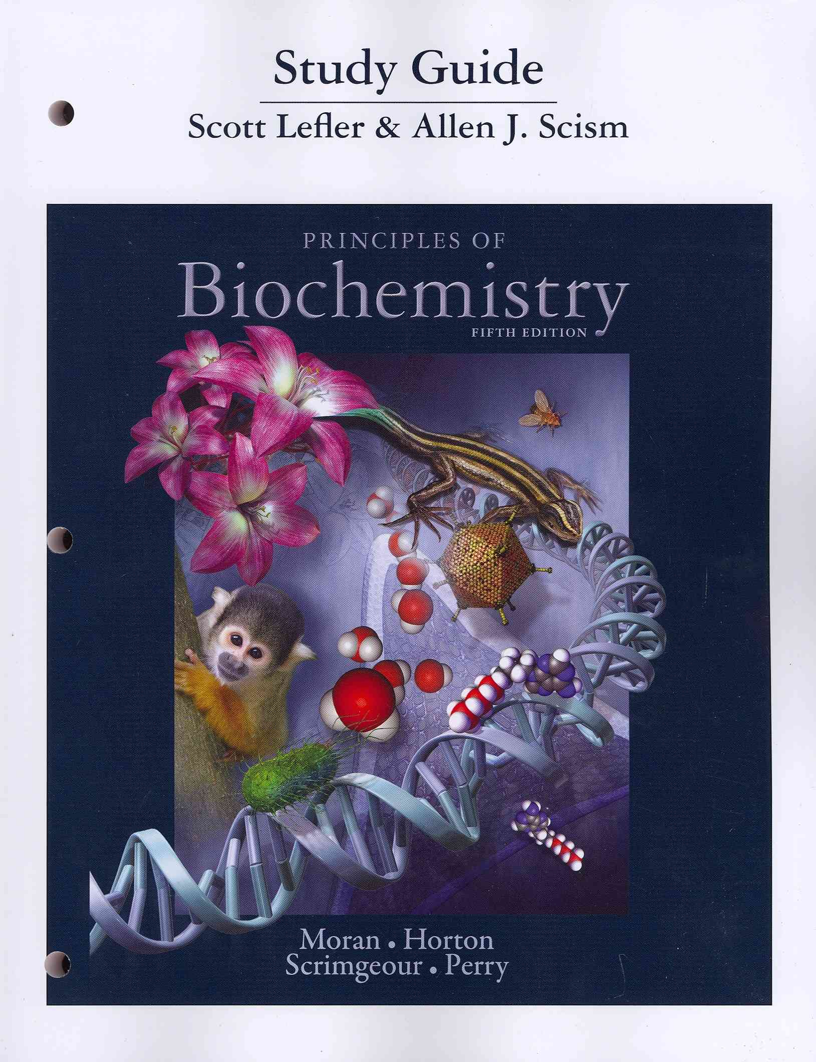 Biochemistry Student Companion By Horton, Robert/ Scism, Allen [Study Guide Edition]